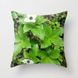 Canadian bunchberry Throw Pillow