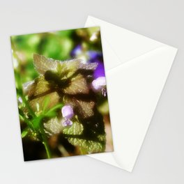 Dead Nettle Stationery Cards
