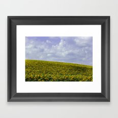 Field of Happiness - Sunflowers  Framed Art Print