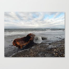 Driftwood And Ice in Spring Canvas Print