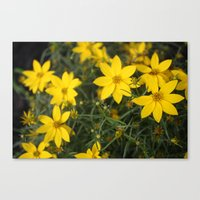 rileigh smirl Canvas Prints featuring Yellow Flowers by Rileigh Smirl