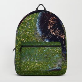The Eye of Reed Backpack