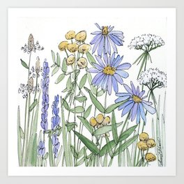 Asters and Wild Flowers Botanical Nature Floral Art Print