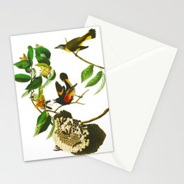 Vintage Scientific Bird & Botanical Illustration Stationery Cards