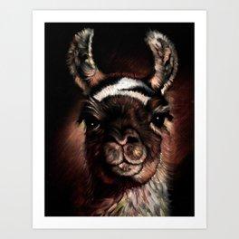 llama Cusco Peru Art Print