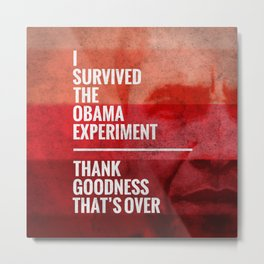 The Obama Experiment Metal Print