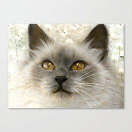 """Cute Kitty (Love cats)"" Canvas Print"