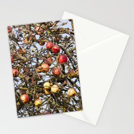 red apples on the branches Stationery Cards