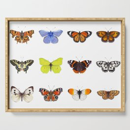 Set of Butterflies, Watercolor Butterflies, butterfly painting Serving Tray