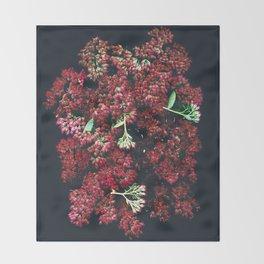 Burgundy Sedum Flowers Throw Blanket