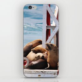sea lion buoy iPhone Skin