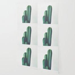Organ Pipe Cactus Wallpaper