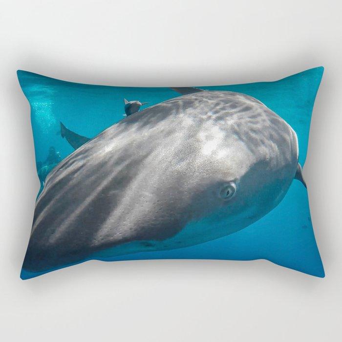 Lemon Shark Close-up Rectangular Pillow