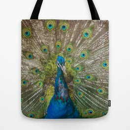 Peacock Showing its Beautiful Feathers Tote Bag