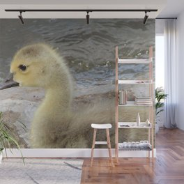 Adorable Gosling Wall Mural