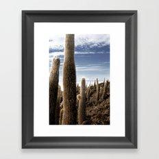 Cactus in Incahuasi Framed Art Print