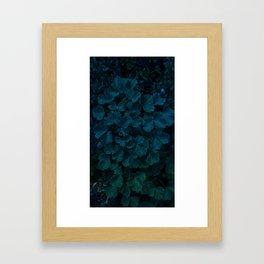 Columbine Leaves Framed Art Print