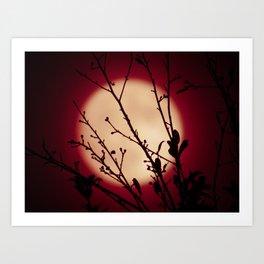 Red Red Moon Wine Art Print