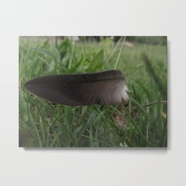Wingless II Metal Print