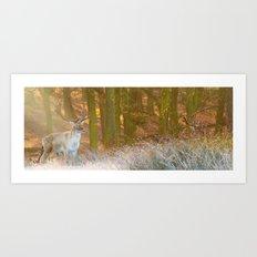 Deer in Richmond Art Print