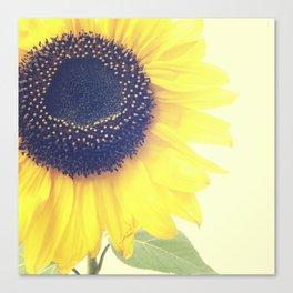 FLOWER 046 Canvas Print