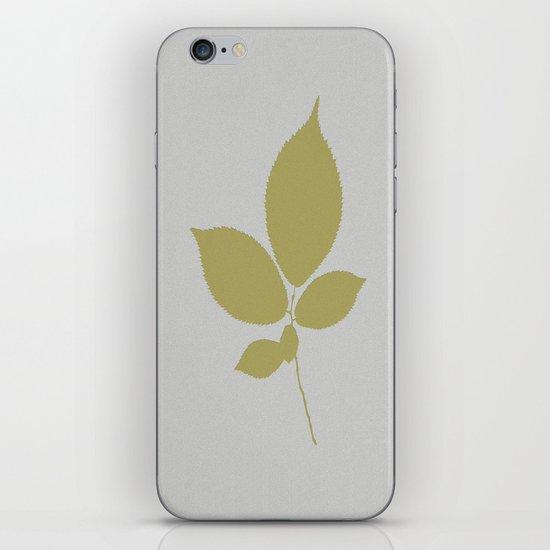 Vert et feuille d'or iPhone & iPod Skin