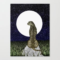 Cheetah Moon II Canvas Print