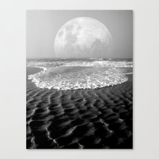 high control Canvas Print