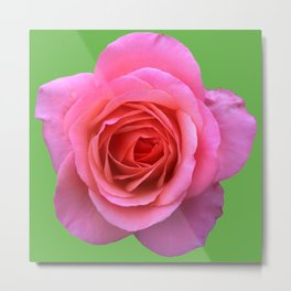 bed of roses: hot pink, neon green Metal Print