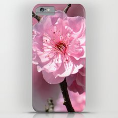 Cherry Blossoms iPhone 6 Plus Slim Case