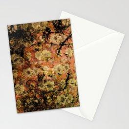 204 6 Stationery Cards