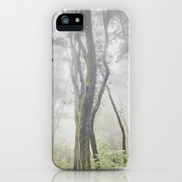 Garajonay National Park. Foggy Mistery Forest. la Gomera iPhone Case
