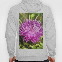 Purple Thistle Wildflower Hoody