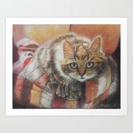 Cat Art - Cute Cat looking at you Art Print