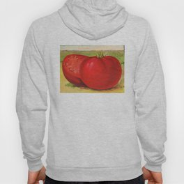 Vintage Illustration of a Beefsteak Tomato (1905) Hoody