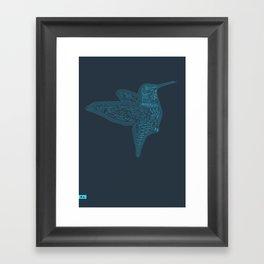 Humming Bird Blue Framed Art Print