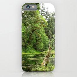 Hoh Rainforest Scene iPhone Case