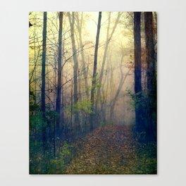 Wandering in a Foggy Woodland Canvas Print