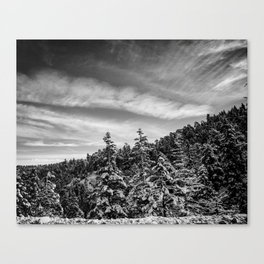 NOT THE CITY Canvas Print