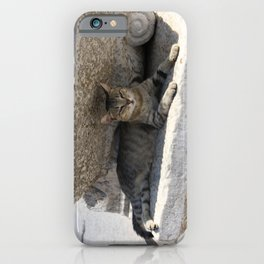 Guardian Of The Ruins iPhone Case