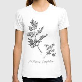 Chervil Botanical Illustration T-shirt