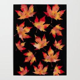 Maple leaves black Poster