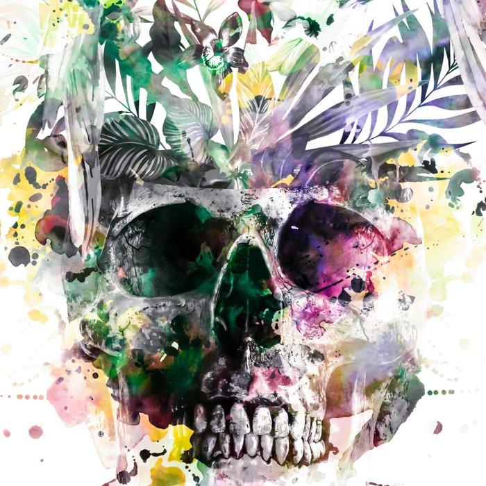 Skull - Parrots 2 Leggings