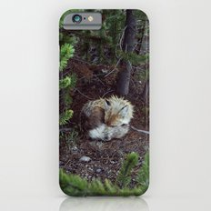 Sleeping Fox iPhone 6 Slim Case