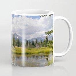 Show Me Your Teets Coffee Mug