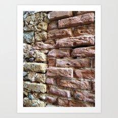 Brick Wall, Coral, St. Thomas, USVI Art Print