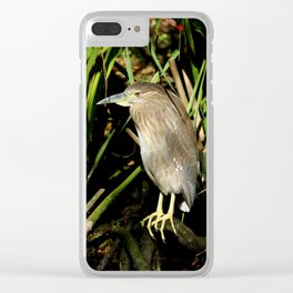 A Young Beauty Clear iPhone Case