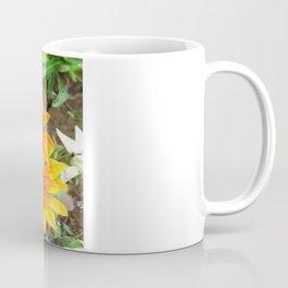 Three Bright Colored Gazania Flowers and Garden Coffee Mug