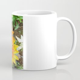Three Bright Colored Gazania Flowers and Garden Coffee Mug