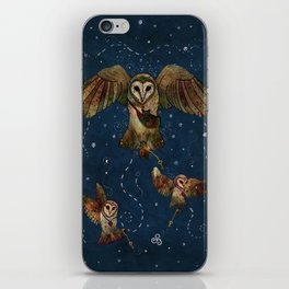 Healers Of Light iPhone Skin